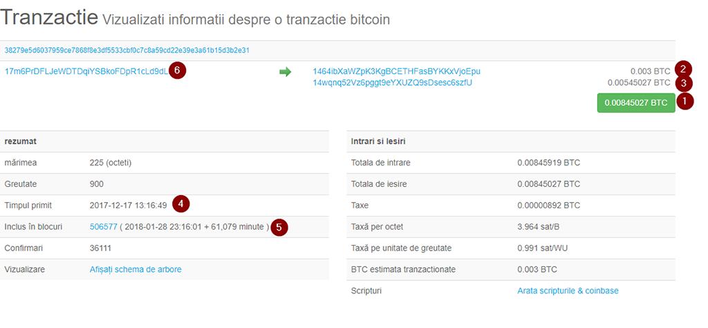 fișier bitcoin mega bani cum se face